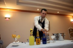 Bols Barmen cup 2009 Classic Style - Hotel Drazica