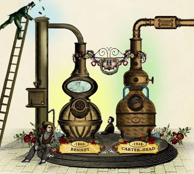 Master_distiller-Lesley_Gracie-hendricksgin-005